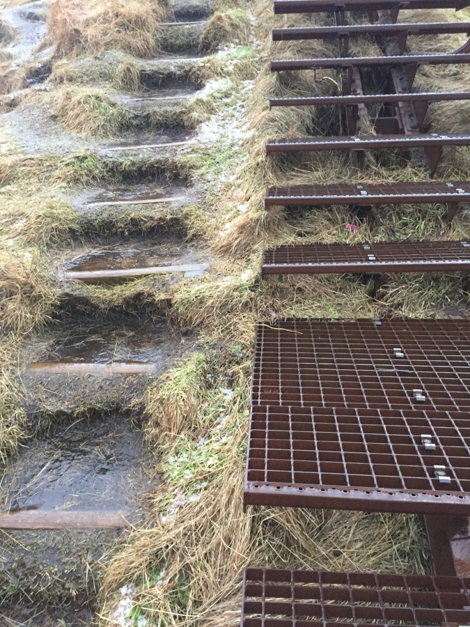Even the new steps were slippery - to the point where people were wiping out regularly
